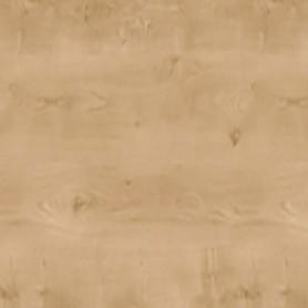 LVT ECO click 30- Forest Oak Natural Ligth